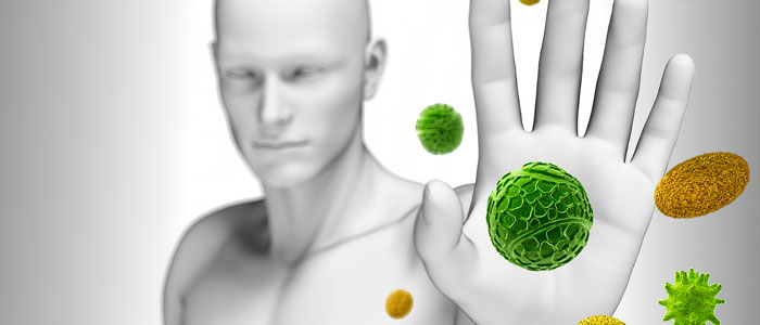 Batata doce - Fortalece o sistema imunológico foto